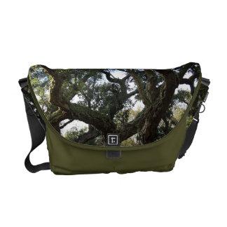 Cork oak or tree of the cork, elegant tree courier bag