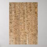 Cork-oak texture poster