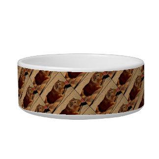 Corkboard Look Guinea Pig Bowl