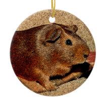 Corkboard Look Guinea Pig Ceramic Ornament