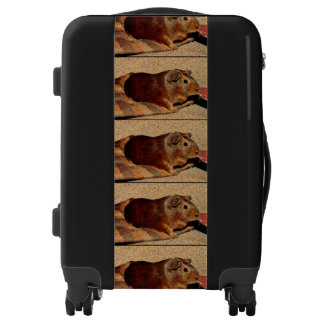 Corkboard Look Guinea Pig Luggage