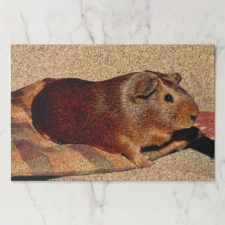 Corkboard Look Guinea Pig Paper Placemat