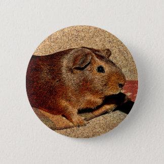 Corkboard Look Guinea Pig Pinback Button