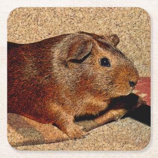 Corkboard Look Guinea Pig Square Paper Coaster