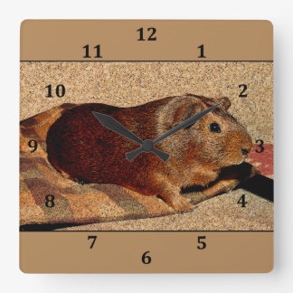Corkboard Look Guinea Pig Square Wall Clock