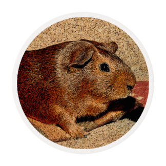 Corkboard Look Guinea Pig Edible Frosting Rounds