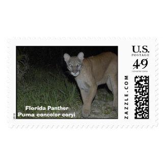 Corkscrew Puma Postage Stamp
