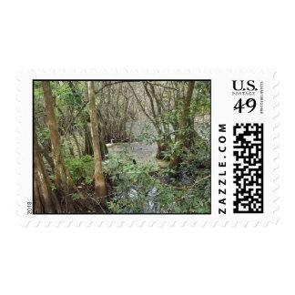 corkscrew swamp, fl postage stamps