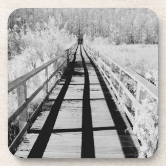 Corkscrew Swamp Sanctuary boardwalk, Florida, Coaster