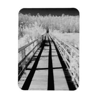 Corkscrew Swamp Sanctuary boardwalk, Florida, Magnet