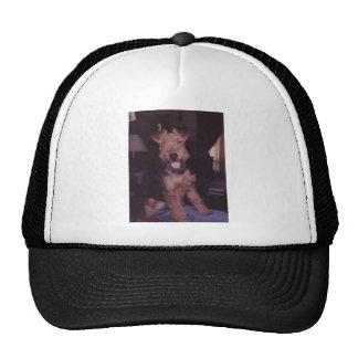 corky mesh hats