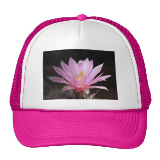 Corky-seed Pincushion Bloom Hat