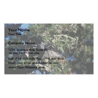 Cormorán, doble-con cresta tarjeta de visita