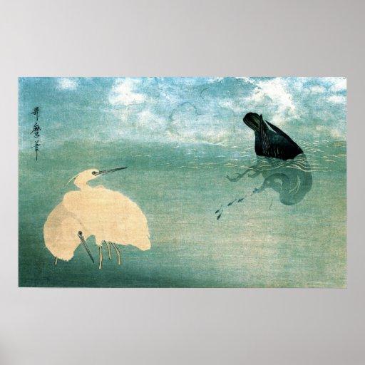 Cormorán y garza blanca 1789 póster