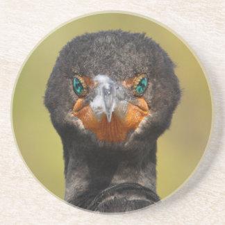 Cormorant Attitude Drink Coaster