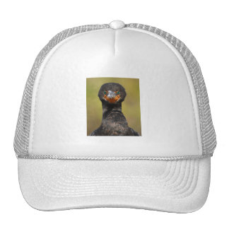 Cormorant Attitude Mesh Hats
