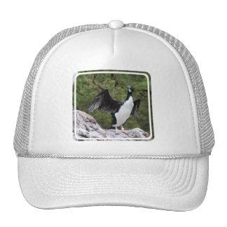 Cormorant Baseball Hat