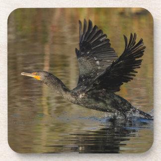 Cormorant Drink Coaster