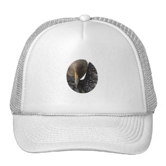 Cormorant Design Hat