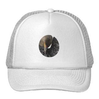 Cormorant Mesh Hat