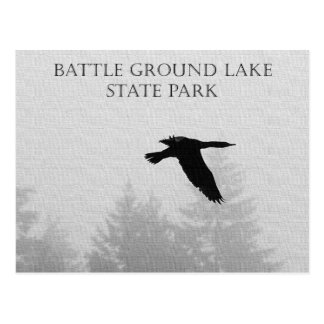 Cormorant in Flight over Battle Ground Lake Postcard
