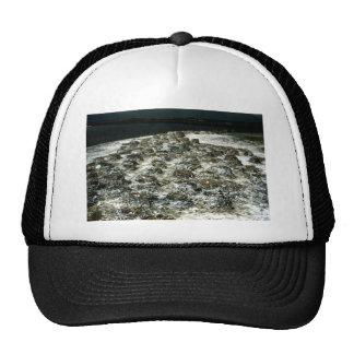 Cormorant Nest Mesh Hat