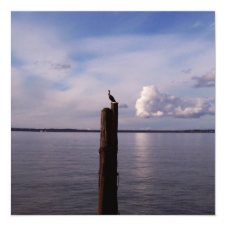 Cormorant On Pole Card