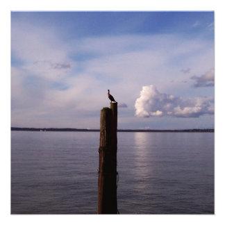 Cormorant On Pole Personalized Announcement