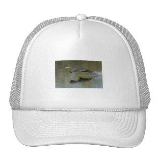 Cormorant Takeoff Mesh Hats