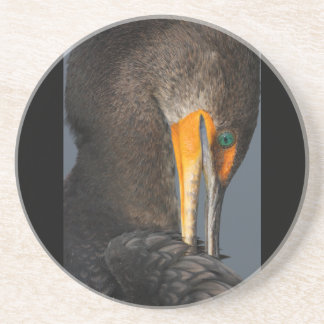 cormorant twist coaster