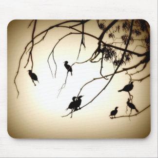 Cormorants Mouse Pad