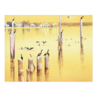 """Cormorants"" Watercolor Beach Birds Postcard"