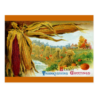 Corn and Pumpkins Vintage Thanksgiving Postcards
