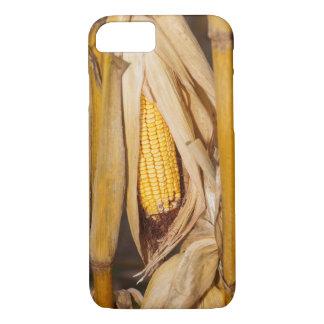 Corn Cobb On Stalk iPhone 8/7 Case