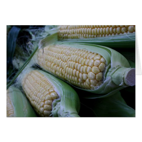 Corn Cobs Food Photography Greeting Card