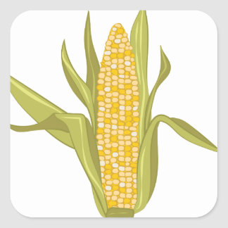 Corn Ear Square Sticker