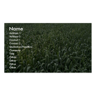 Corn field Double-Sided standard business cards (Pack of 100)