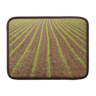 Corn field MacBook air sleeves