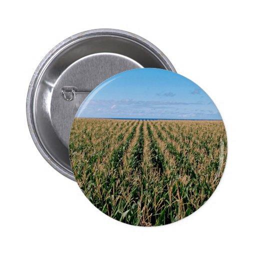 Corn field pinback button