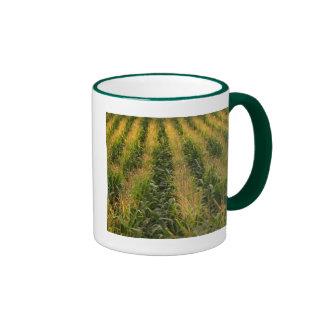 Corn field ringer mug