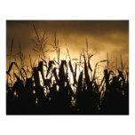 Corn field Silhouettes Personalized Invites