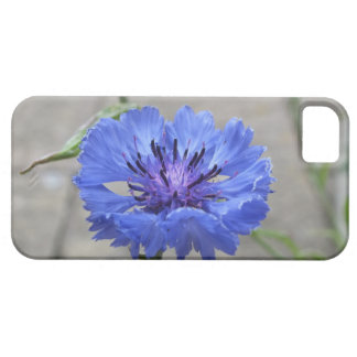 corn flower iPhone / iPad case