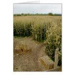 Corn Maze Greeting Card