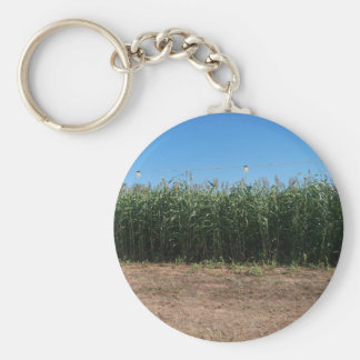 corn maze keychain