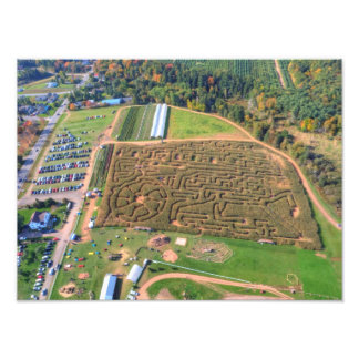 Corn Maze, Nova Scotia, Canada Photo