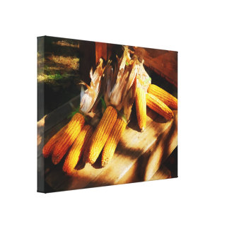 Corn on the Cob at Outdoor Market Canvas Print