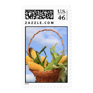 Corn on the Cob Postage Stamp