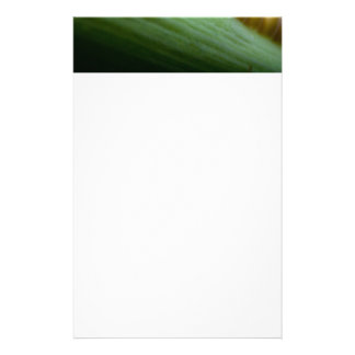 Corn on the Cob Stationery Paper