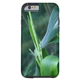 Corn Plant iPhone case