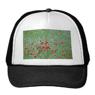 Corn poppies (Papaver Rhoeas)  flowers Mesh Hat